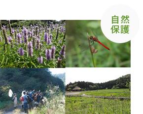 日本自然保護協会の活動の様子