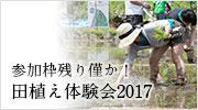 田んぼアート&田植え体験会2017