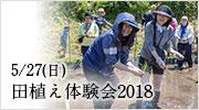 田植え体験会2018