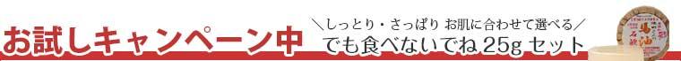 送料無料 無添加 食べられる程やさしい 池田さんの石けん 期間限定 お試しセット
