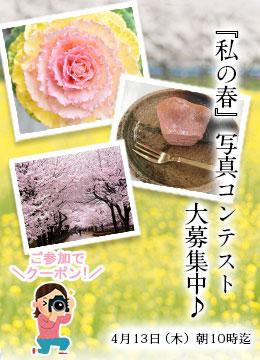 【春のわくわくフェア】