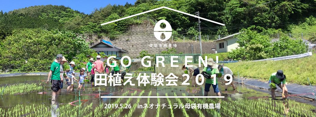 ゴーグリーン!稲刈り収穫体験2019