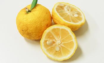 甘酸っぱい柚子の香り