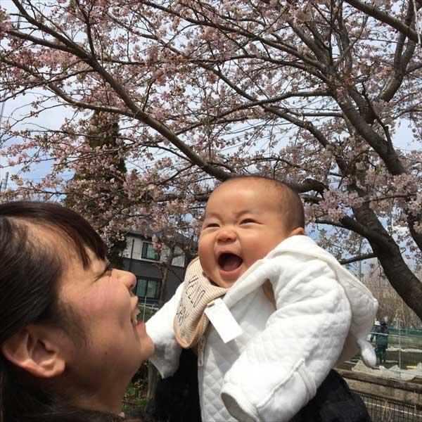 桜フェア2014