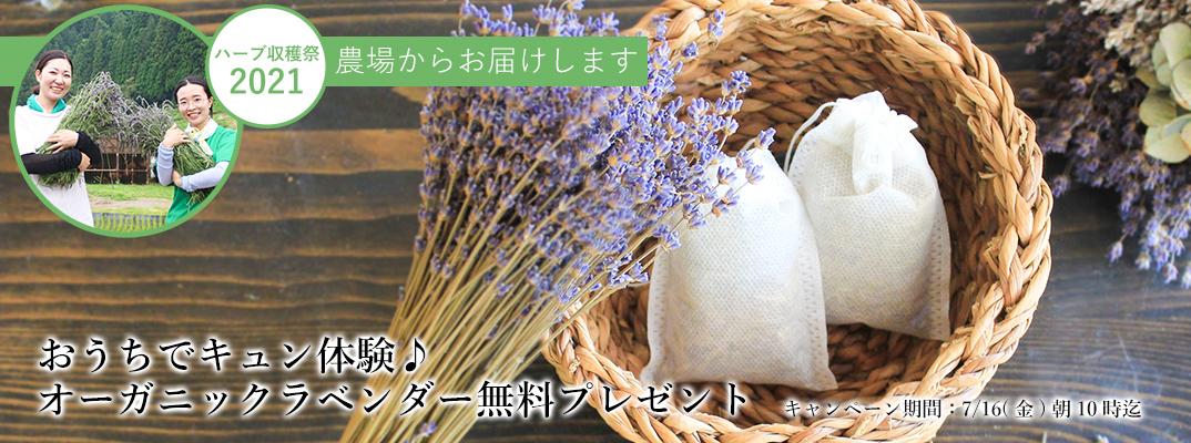 ハーブ収穫祭2021