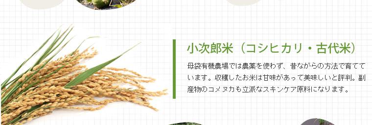 小次郎米:母袋有機農場では農薬を使わず、昔ながらの方法で育てています。収穫したお米は甘味があって美味しいと評判。副産物のコメヌカも立派なスキンケア原料になります。