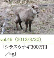 シラスウナギ300万円