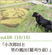 小次郎田と風の里田(稲刈り前)