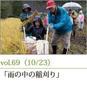 雨の中の稲刈り