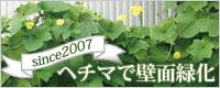 緑のカーテンで夏涼しく 節電 壁面緑化