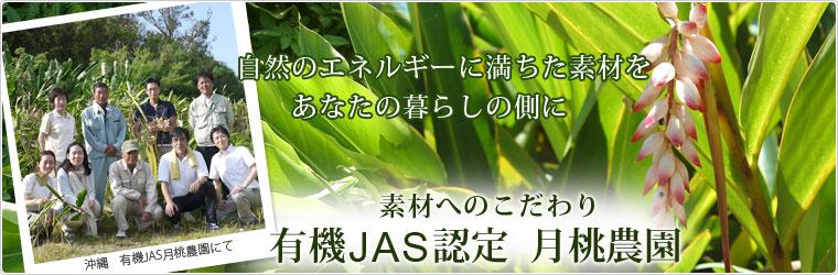 沖縄 有機JAS認定 月桃農園