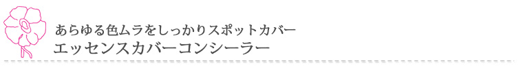 エッセンスカバーコンシーラー 3,200円(本体)