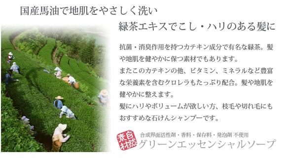 池田さんの石けんシャンプー グリーンエッセンシャルソープ 概要