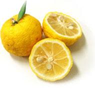 柚子に含まれるリモネンは疲れを和らげ気持ちを爽やかに