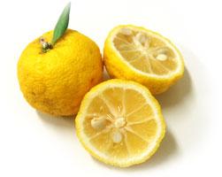 高知県北川村 柚華園 有機JAS柚子