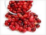クランベリー種子油