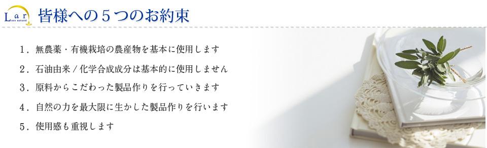 http://www.neo-natural.com/shohin/lar/otamesi/images/yakusoku.jpg