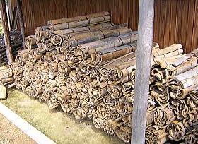 竹炭、竹酢液用孟宗竹の乾燥