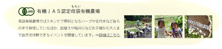 有機JAS認定母袋有機農場