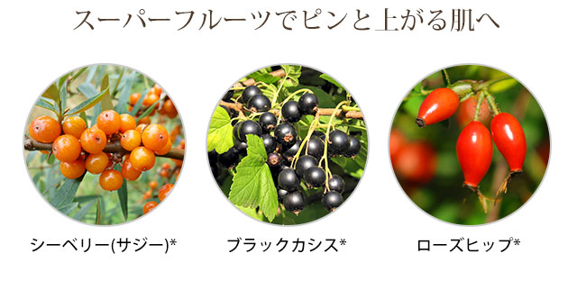 スーパーフルーツでピンと上がる肌へ シーベリー(サジー)、ブラックカシス、ローズヒップ