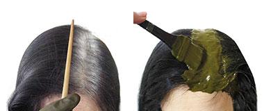グリーンノート オーガニータ エコサート認証 白髪染め ヘナ染め