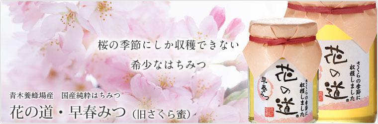 青木養蜂場産 国産純粋はちみつ 「花の道・早春みつ」